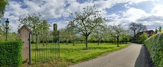 De Stokhorst